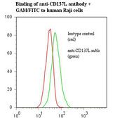 Flow cytometry of TNFSF9 / CD137L antibody This image was taken for the unmodified form of this product. Other forms have not been tested.