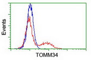 HEK293T cells transfected with either overexpress plasmid (Red) or empty vector control plasmid (Blue) were immunostained by anti-TOMM34 antibody, and then analyzed by flow cytometry.