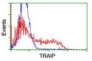 HEK293T cells transfected with either overexpress plasmid (Red) or empty vector control plasmid (Blue) were immunostained by anti-TRAIP antibody, and then analyzed by flow cytometry.