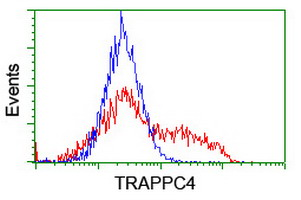 HEK293T cells transfected with either overexpress plasmid (Red) or empty vector control plasmid (Blue) were immunostained by anti-TRAPPC4 antibody, and then analyzed by flow cytometry.