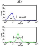 TSPAN12 Antibody flow cytometry of 293 cells (bottom histogram) compared to a negative control cell (top histogram). FITC-conjugated goat-anti-rabbit secondary antibodies were used for the analysis.