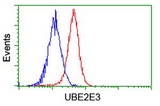 Flow cytometry of HeLa cells, using anti-UBE2E3 antibody (Red), compared to a nonspecific negative control antibody (Blue).