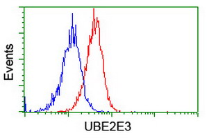 Flow cytometry of Jurkat cells, using anti-UBE2E3 antibody (Red), compared to a nonspecific negative control antibody (Blue).