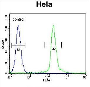 UNK Antibody flow cytometry of HeLa cells (right histogram) compared to a negative control cell (left histogram). FITC-conjugated goat-anti-rabbit secondary antibodies were used for the analysis.