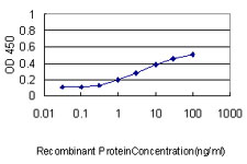 Detection limit for recombinant GST tagged ATP7B is approximately 0.3 ng/ml as a capture antibody.