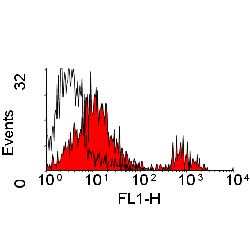 WC1 Surface Antigen Antibody - Flow cytometry of bovine peripheral blood lymphocytes with Mouse anti-Bovine WC1: FITC This image was taken for the unconjugated form of this product. Other forms have not been tested.