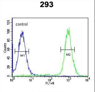BRWD2 Antibody flow cytometry of 293 cells (right histogram) compared to a negative control cell (left histogram). FITC-conjugated goat-anti-rabbit secondary antibodies were used for the analysis.