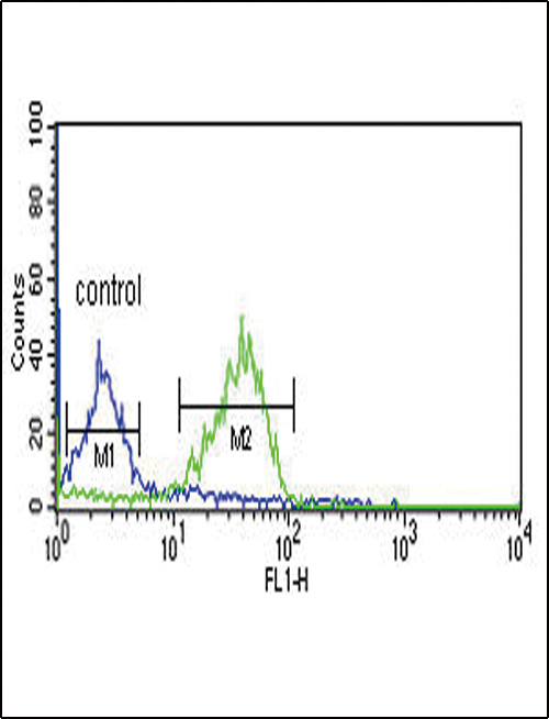WNT1 Antibody - WNT1 Antibody flow cytometry of MCF-7 cells (right histogram) compared to a negative control cell (left histogram). FITC-conjugated goat-anti-rabbit secondary antibodies were used for the analysis.
