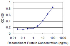 Detection limit for recombinant GST tagged ZNHIT2 is 1 ng/ml as a capture antibody.
